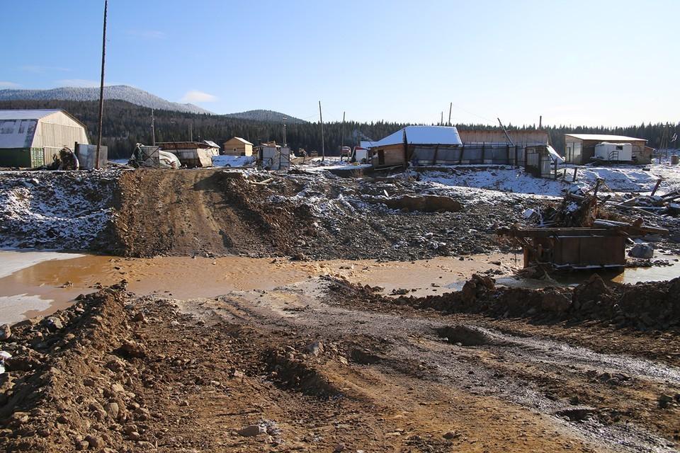 Красноярская компания выплатила более 180 миллионов рублей за ущерб экологии