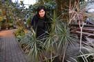 8 марта в Донецке: Вырежи купон из газеты - сходи в ботанический сад