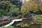Парк «Форосский» обещают сделать открытым для всех