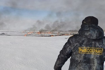 Росрыболовство оценит ущерб водным ресурсам в результате пожара на Оби под Нижневартовском