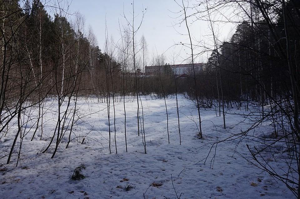 Здесь хотят построить хирургический корпус. Фото: Дмитрий Руденок