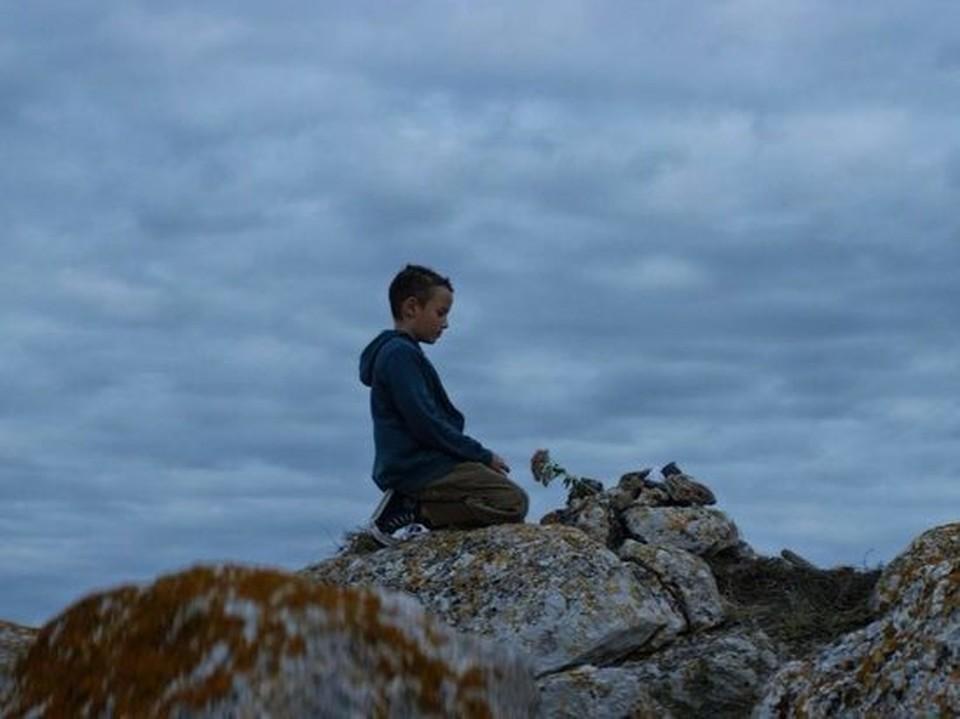 """Мальчик пришел на могилу своей собаки. Фото: кадр фильма """"Чупакабра"""", режиссер Григорий Коломийцев"""