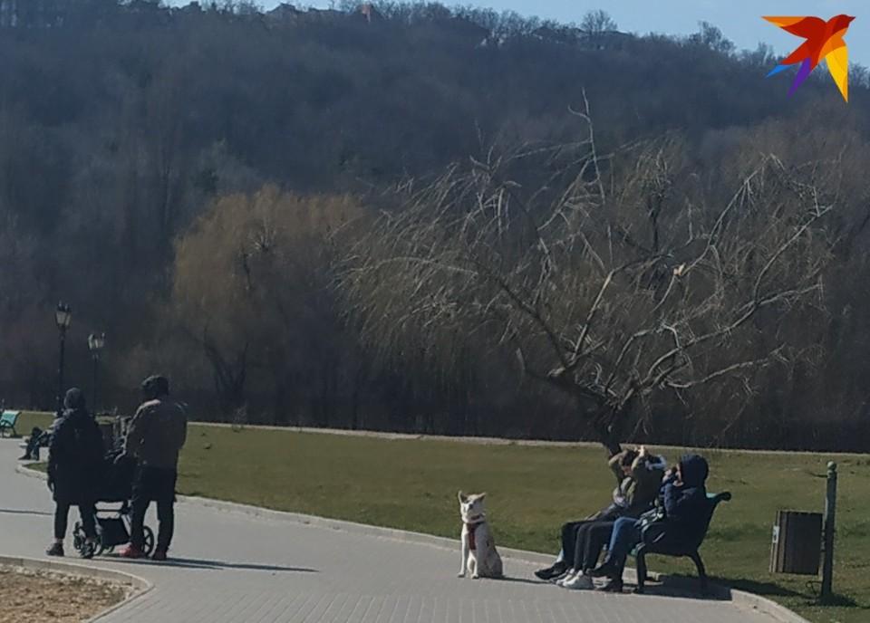 Хорошо весной по парку прогуляться