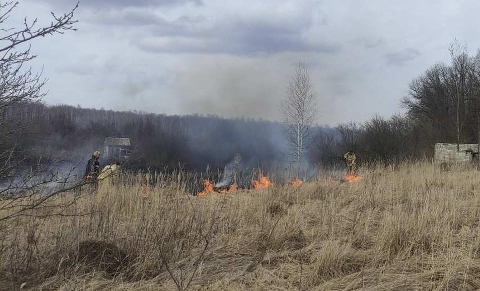 Только в Шебекинском городском округе пожарно-спасательные подразделения ликвидировали травяные палы пять раз