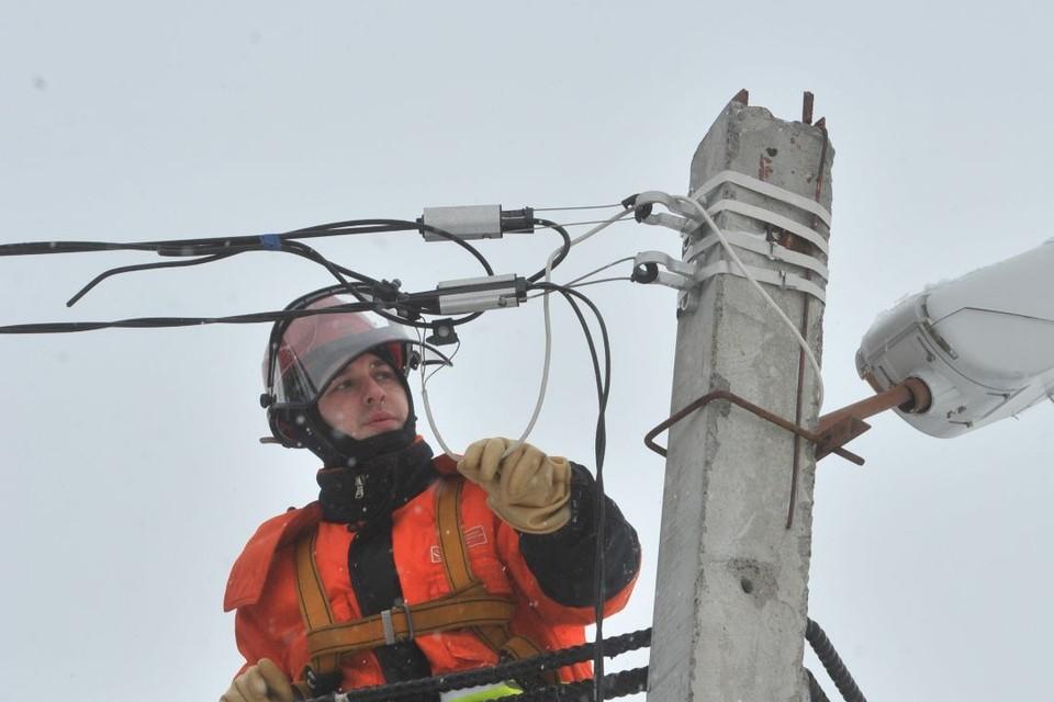 «Горэлектросеть» обязали оборудовать линии электропередачи птицезащитными устройствами.