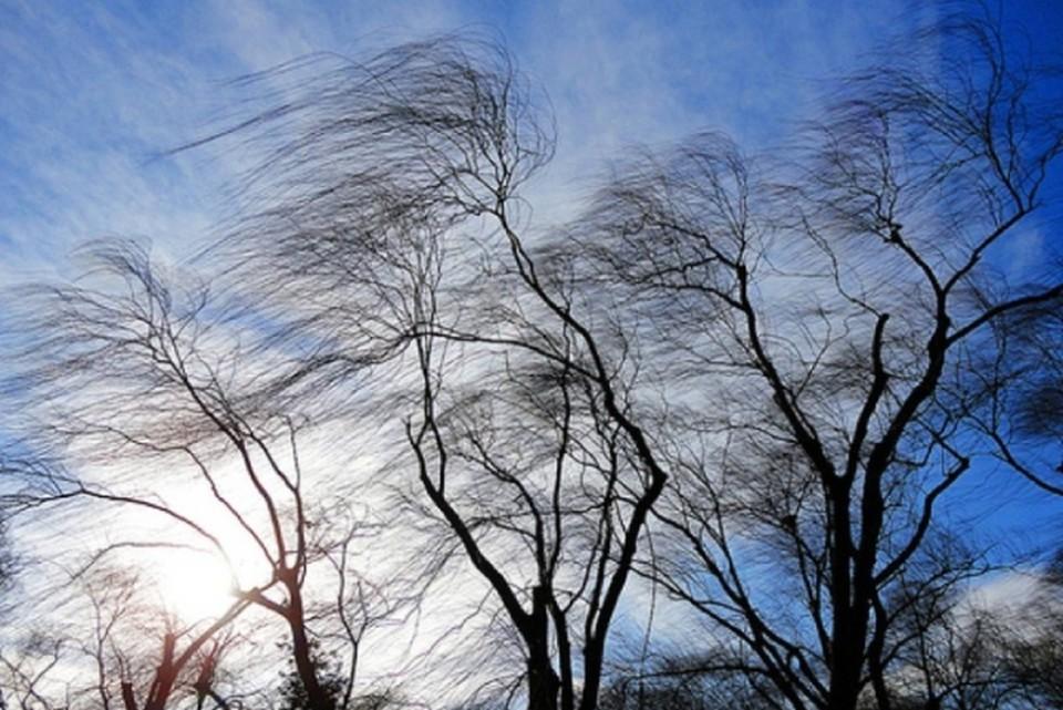 В Хакасии синоптики спрогнозировали на 3 апреля сильный ветер ФОТО: ГУ МЧС России по республике Хакасия
