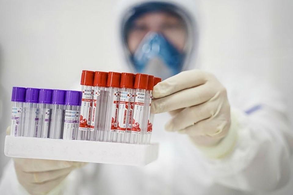 В Госдуме попросили обеспечить все больницы экспресс-тестами на инфекционные болезни
