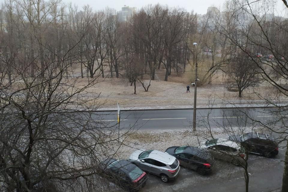 В середине весны в Петербург заглянули отголоски настоящей зимы.