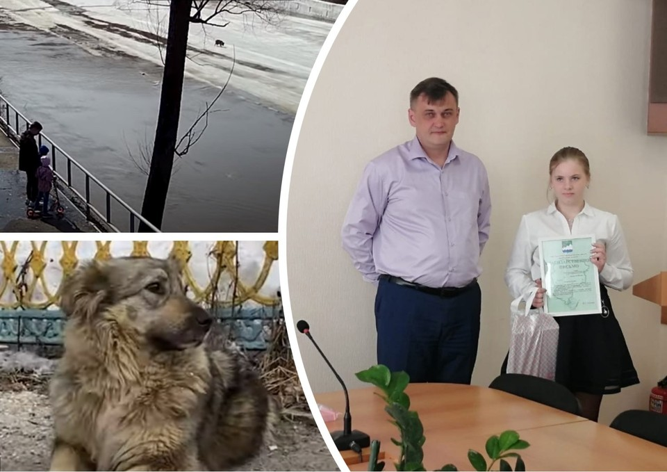 Полину Полякову и других ребят наградили в мэрии Аши. Фото: Юлия Полякова