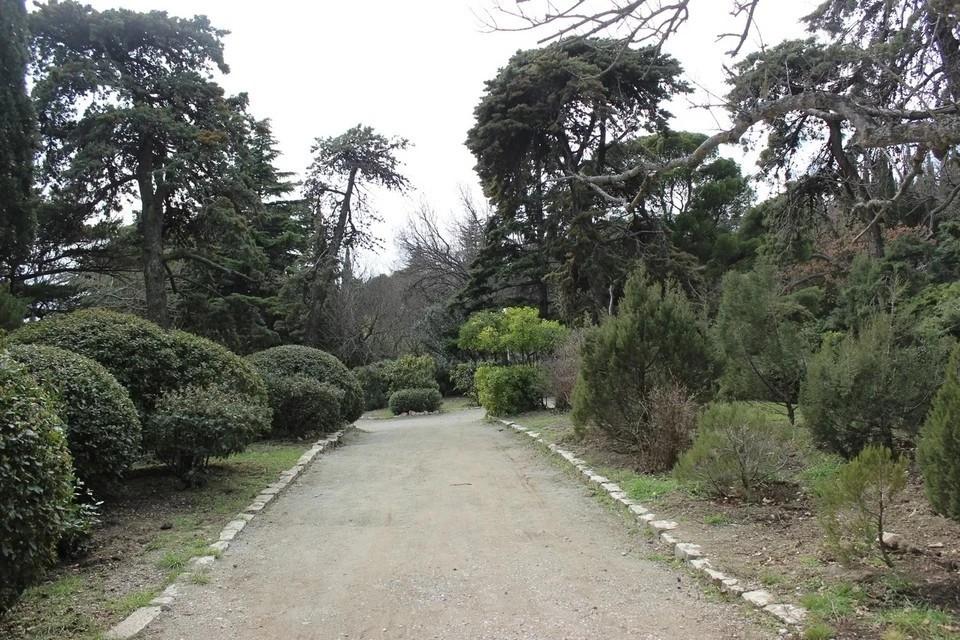Комиссия повторно проверила состояние Форосского парка