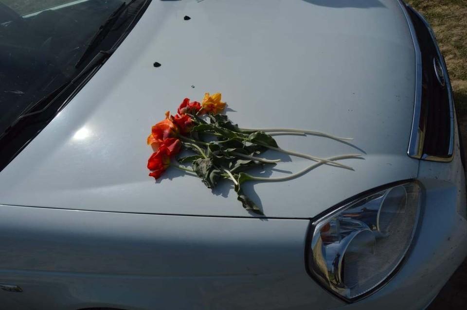 Сорванные цветы занесены в Красную книгу Казахстана и потому шымкентцу грозит такой штраф