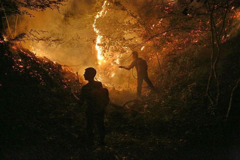 Нарушителям в пожароопасный сезон грозит административный штраф.