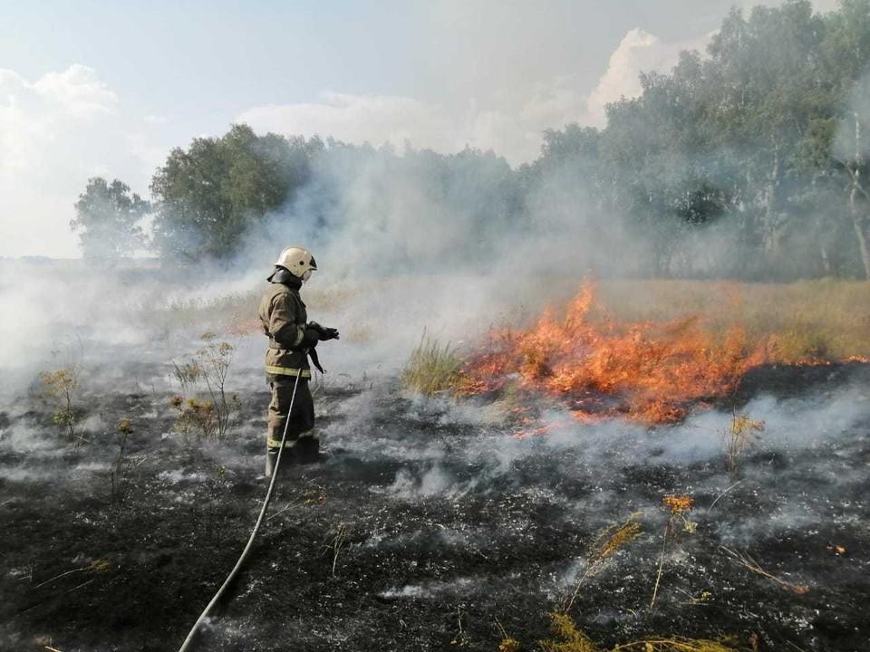 В Омской области ввели особый противопожарный режим. Фото: пресс-службы ГУ МЧС по Омской области