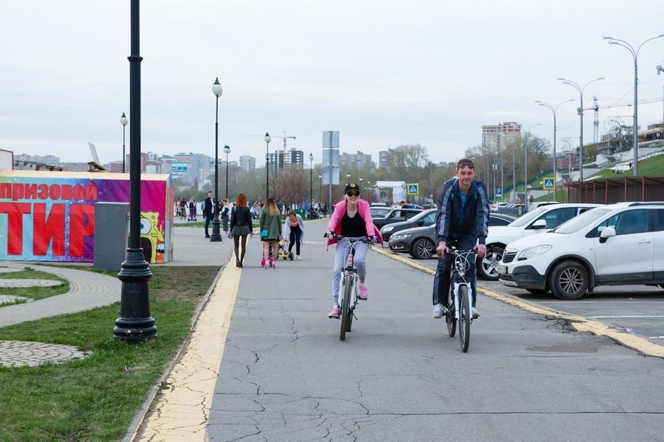 Самокаты, велосипеды и скейтборды: где и за сколько можно арендовать в Ижевске