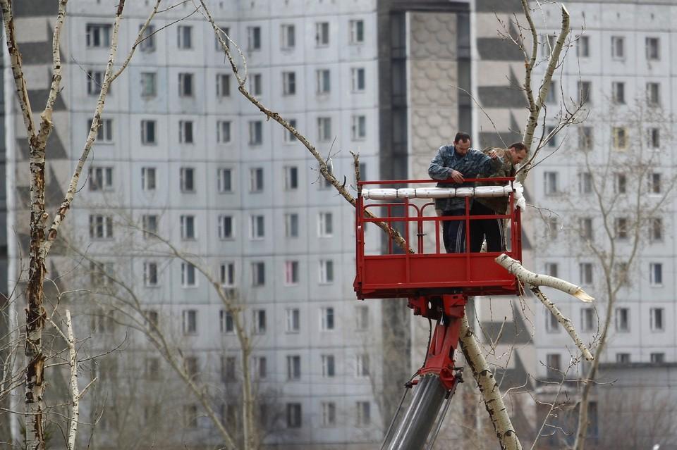 В Ачинске во время обрезки деревьев рабочий чуть не убил напарника веткой