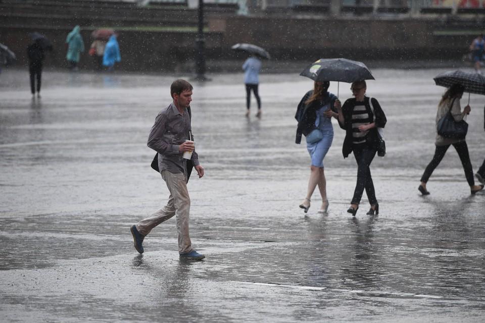 Днем небольшие, местами умеренные осадки в виде дождя. Местами грозы.