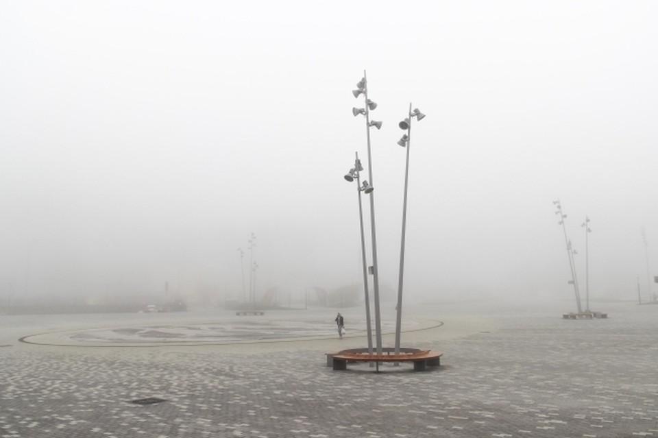 В Краснодар пришла весна, дожди не окажут влияния на комфортную температуру, которая установилась в городе