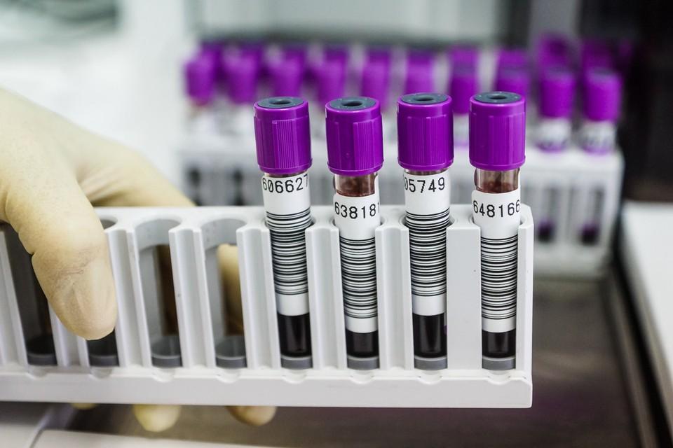 С начала пандемии в регионе уже сделали более 2,3 млн тестов на коронавирус