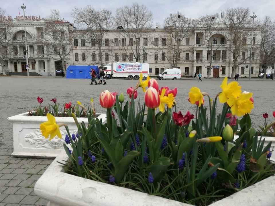 В Севастополе днем тепло до +15°.