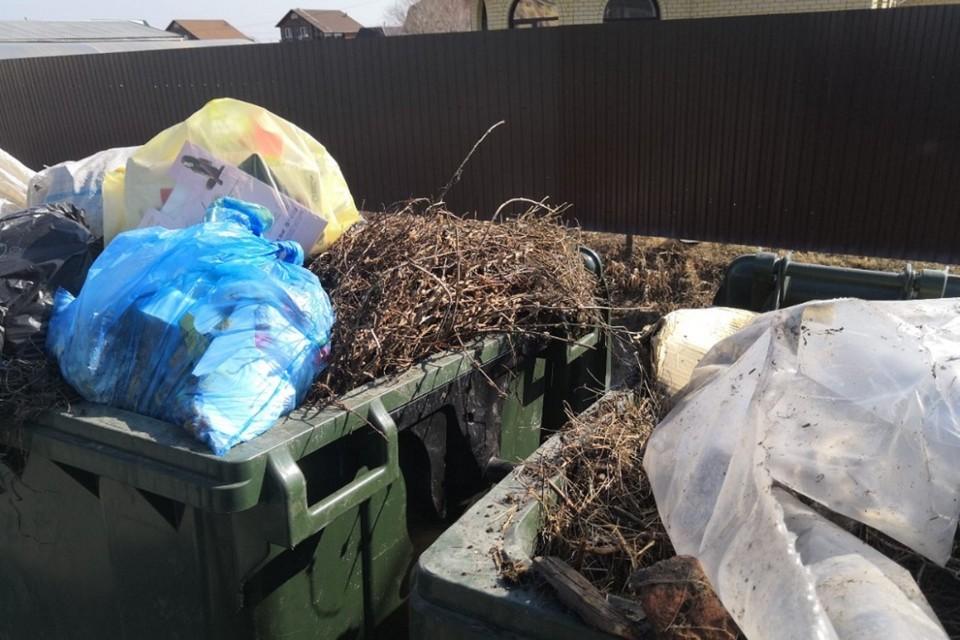 Весной контейнерные площадки оказываются завалены мешками с мусором, собранным на субботниках и ветками от обрезки деревьев.