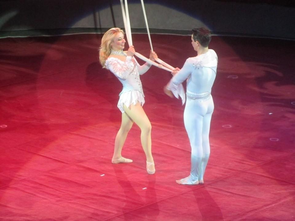 Цирк возобновляет показ представлений
