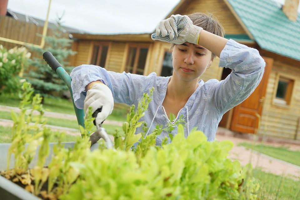 На майские многие отправились на дачу, поближе к огороду — как раз уже пора сажать картошку и размечать грядки под морковь, лук и кабачки. Да и вообще работы на участке много