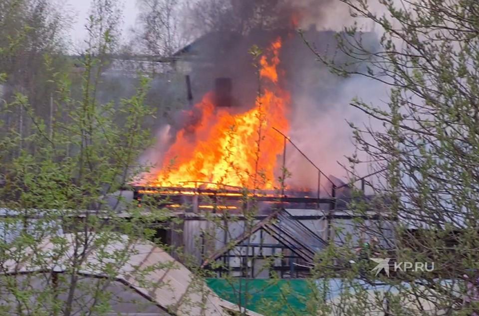 """Дом и надворные постройки сгорели дотла. Фото: читатель """"КП"""""""