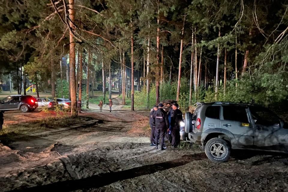 В перелеске, где, предположительно, пропала девочка, продолжают работать следователи.