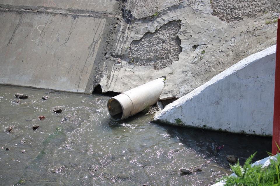 Власти зафиксировали сотни свалочных очагов вдоль устья реки. Фото: правительство РО