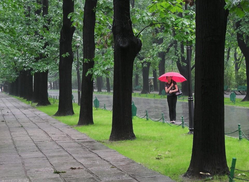 На большей части Казахстана осадков не ожидается, но в некоторых областях не исключены дожди