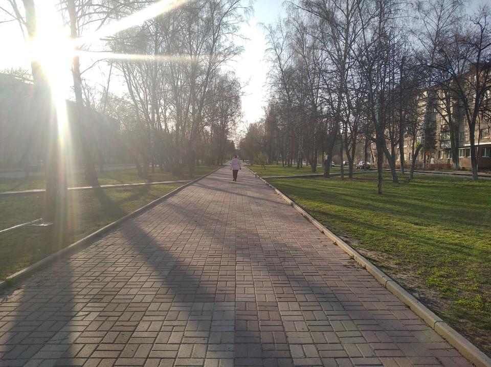 Городские парки обработают против клещей