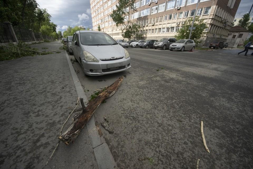 Дерево упала на машину, которая стояла на парковке