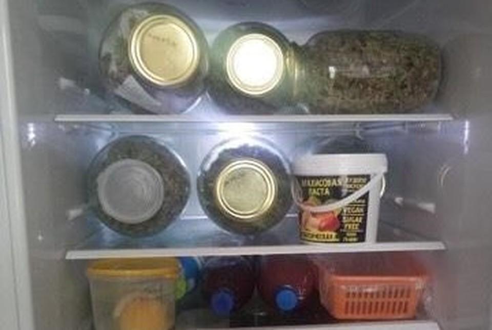 В холодильнике у жителя Нижневартовска нашли банки с марихуаной Фото: Пресс-служба УМВД России по г. Нижневартовску
