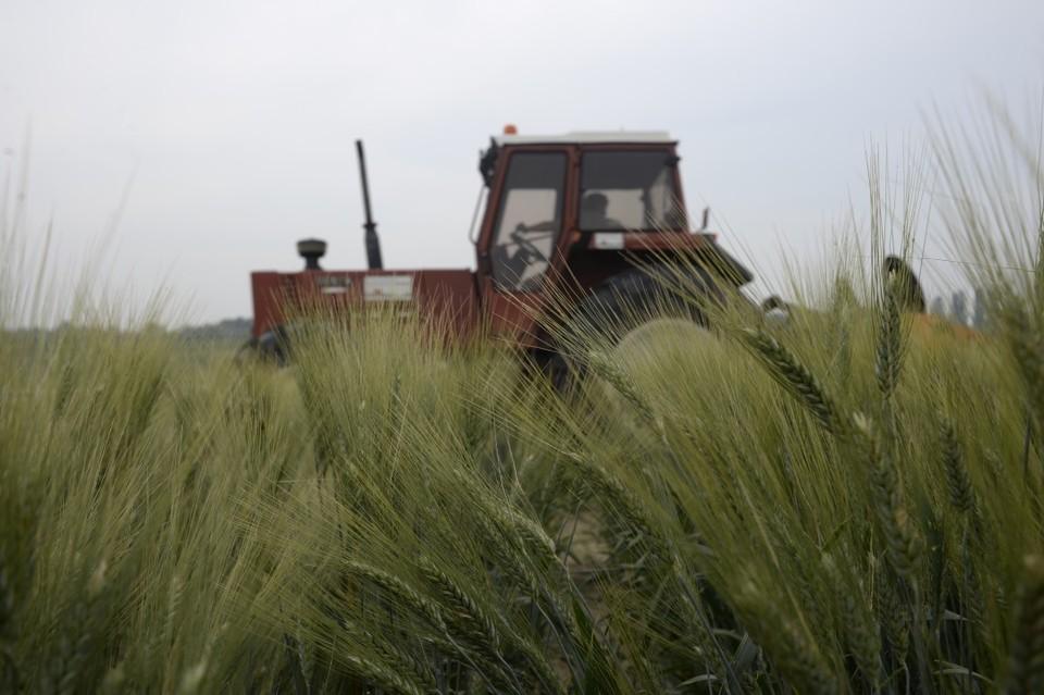 Ежегодно Ставрополье наращивает объемы экспорта