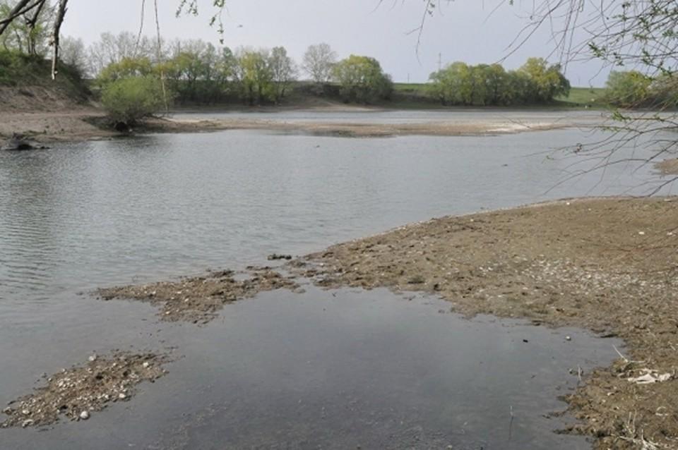 Днестр стремительно мелеет и теряет свою воду (Фото: gagauzinfo.md).