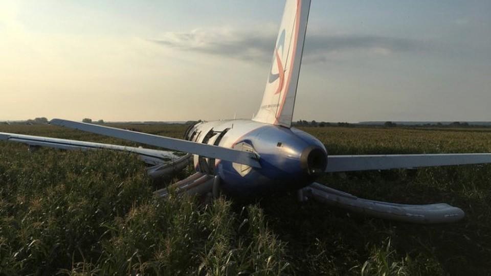 Самолет совершил вынужденную посадку. (Фото: publika.md).
