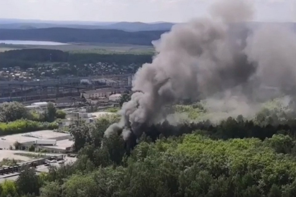 Сильный пожар из-за пуха произошел в парке «Семь Ключей» Фото: скриншот с видео