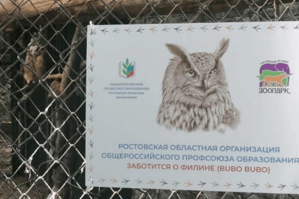 Донские педагоги взяли под опеку филинов ростовского зоопарка. Фото: сайт Министерства образования региона.