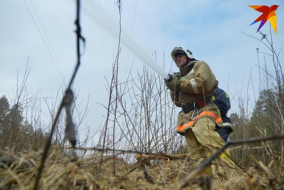 Пожарные борются с пожаром в Зашейковском лесничестве.