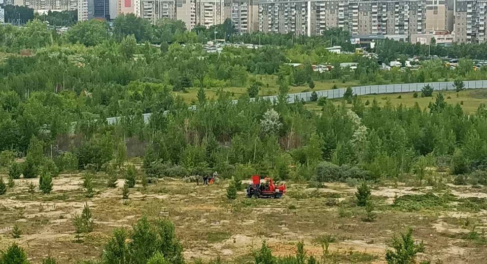Фото: читательница КП-Челябинск