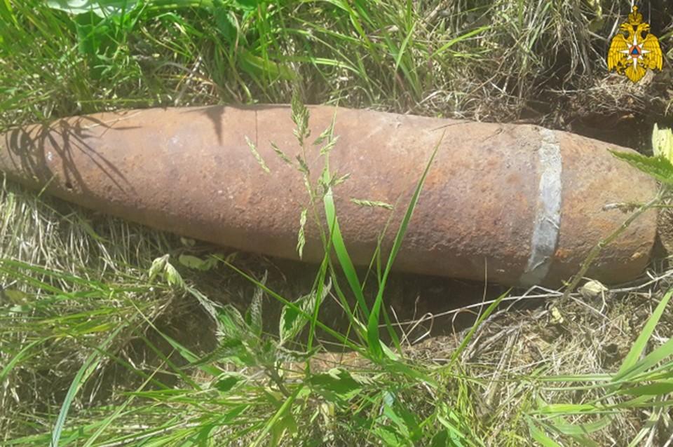 Снаряд обезвредили в Торопецком районе Фото: ГУ МЧС России по Тверской области