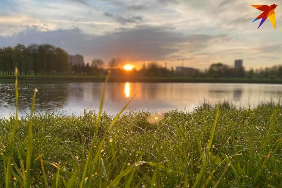 В Беларуси на 11 июня объявлен желтый уровень опасности