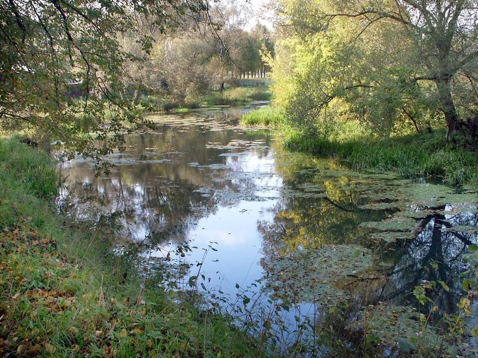 В Туле завод «Штамп» отравлял воду в реке Тулице