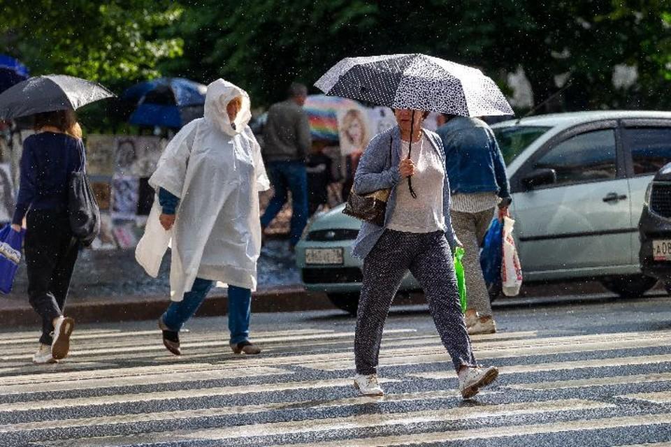 В Ярославской области в ближайшие выходные будет пасмурно и дождливо