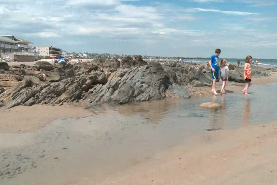 Непонятная субстанция покрыла береговую линию в одном из популярных мест отдыха. Фото: стоп-кадр видео
