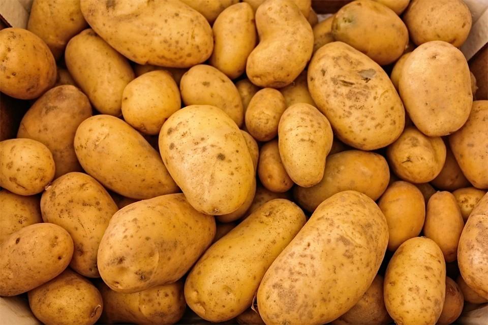 За месяц наибольший прирост цен отмечается на картофель – 11,5 процента. Фото: pixabay