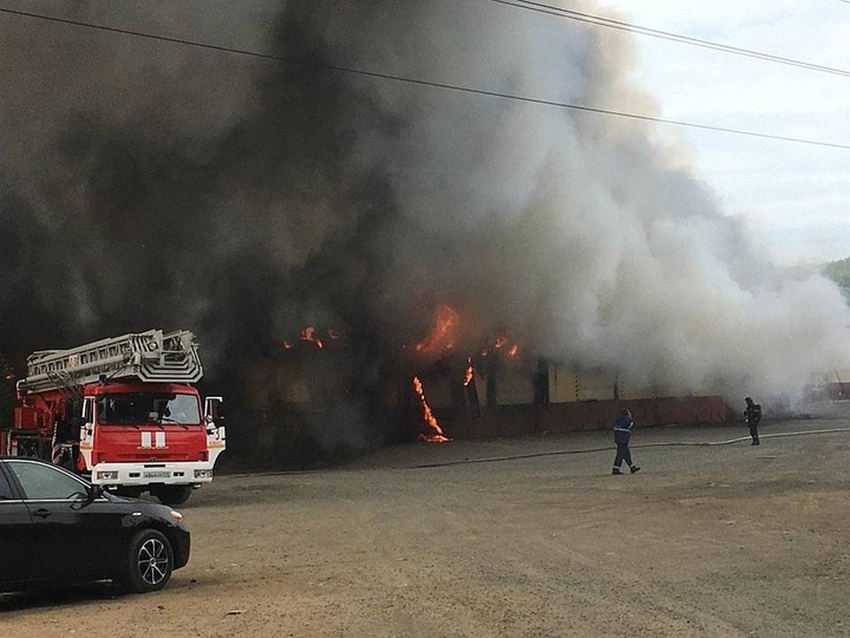 Работу пожарным осложняли сильный ветер и дым.