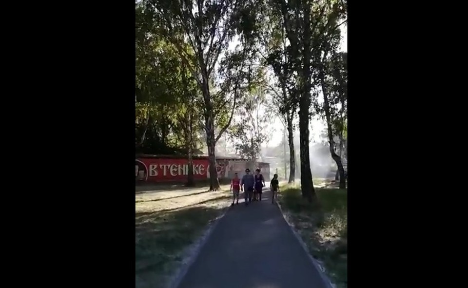 Одним запах шашлыка кажется приятным, другим - нет. Фото: скрин видео читателя КП-Челябинск