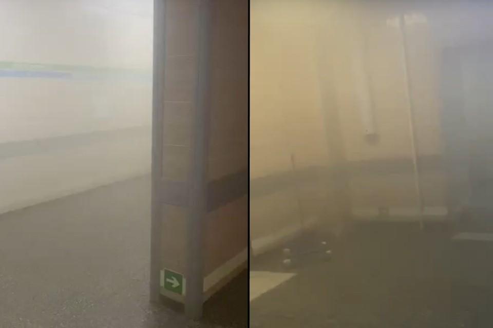 В Елизаветинской больнице рассказали подробности пожара в кабинете с КТ. Фото: СОЦСЕТИ