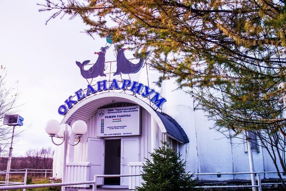 По словам губернатора, нужно разрабатывать проект реконструкции океанариума, чтобы он был комфортным и интересным для всех. Фото: vk.com/okeanarium51